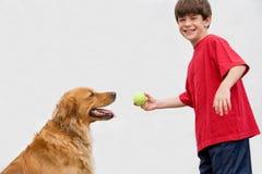 Muchacho que juega el retén con el perro imágenes de archivo libres de regalías