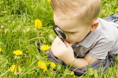 Muchacho que mira a través de una lupa en la hierba Fotos de archivo libres de regalías