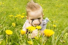 Muchacho que mira a través de una lupa en la hierba Imagen de archivo