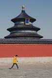 Muchacho que pasa por el Templo del Cielo en Pekín Imagen de archivo libre de regalías