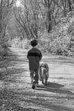 Muchacho que recorre el perro Foto de archivo libre de regalías