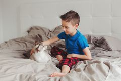 Muchacho que se sienta en cama en dormitorio en casa y que acaricia frotando ligeramente el gato punto-coloreado oriental imagen de archivo libre de regalías