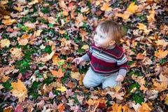 Muchacho que se sienta en la tierra cubierta en las hojas que miran para arriba Imagen de archivo