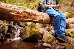 Muchacho que se sienta en un árbol caido en un bosque usando un smartphone Imagen de archivo