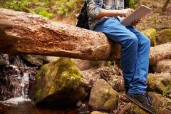 Muchacho que se sienta en un árbol en un bosque usando una tableta Fotos de archivo libres de regalías