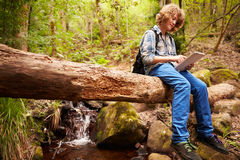 Muchacho que se sienta en un árbol en un bosque usando una tableta Imágenes de archivo libres de regalías