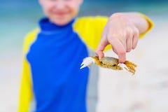 Muchacho que sostiene el cangrejo fotografía de archivo