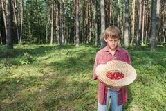 Muchacho que sostiene el sombrero de paja lleno de wildberries rojos Fotos de archivo libres de regalías