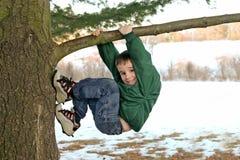 Muchacho que sube un árbol en invierno imagenes de archivo