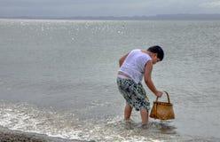 Muchacho que toma shelles en una playa Foto de archivo