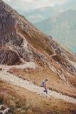 Muchacho que va de excursión en las montañas Fotografía de archivo