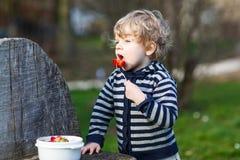Muchacho rubio precioso de dos años que come las fresas al aire libre Imagen de archivo