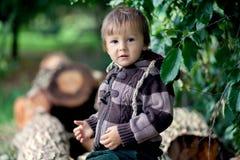 Muchacho, sentándose en troncos de un árbol Foto de archivo