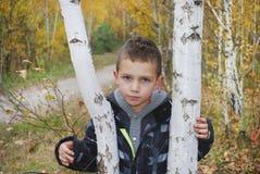 Muchacho serio en bosque del otoño. Imagenes de archivo