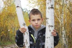 Muchacho serio en bosque del otoño. Imagen de archivo