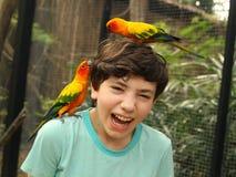 Muchacho sonriente del adolescente en parque zoológico asiático con los loros del ara en su cabeza Imágenes de archivo libres de regalías