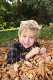 Muchacho sonriente en una pila de hojas Imagen de archivo