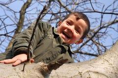 Muchacho sonriente feliz que sube en el árbol Foto de archivo