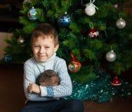 Muchacho y árbol de navidad Imagenes de archivo