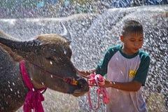 Muchacho y búfalo en chapoteo del agua Fotos de archivo