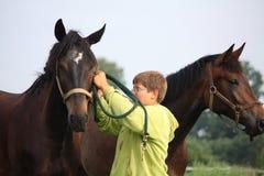 Muchacho y caballos del adolescente de la manada Fotos de archivo libres de regalías