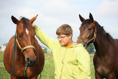 Muchacho y caballos del adolescente de la manada Imagen de archivo libre de regalías