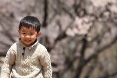 Muchacho y flores de cerezo japoneses Foto de archivo