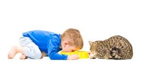 Muchacho y gato que comen junto Imagen de archivo