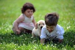 Muchacho y muchacha con su perro en el parque Fotos de archivo libres de regalías