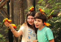 Muchacho y muchacha en parque zoológico del aire abierto con los loros que se sientan a mano y la cabeza Imagenes de archivo