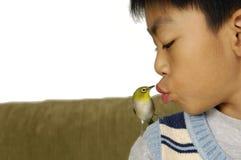 Muchacho y pájaro Imagen de archivo