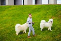 Muchacho y perros Imagenes de archivo