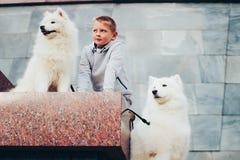 Muchacho y perros Foto de archivo libre de regalías