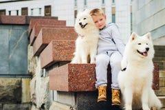 Muchacho y perros Imagen de archivo