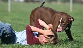 Muchacho y su perro Fotografía de archivo libre de regalías
