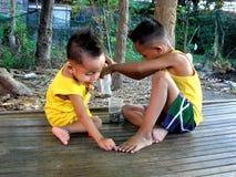 Muchachos asiáticos jovenes que juegan debajo de un árbol Imágenes de archivo libres de regalías