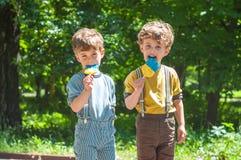 Muchachos gemelos con las piruletas a disposición Fotografía de archivo