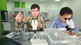 Muchachos jovenes de los científicos que estudian muestras en el laboratorio Primer 4K almacen de video
