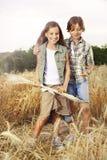Muchachos jovenes que se divierten en el campo de trigo Fotografía de archivo