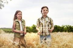 Muchachos jovenes que se divierten en el campo de trigo en verano Fotos de archivo libres de regalías