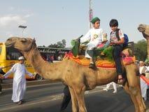 Muchachos musulmanes en el montar a caballo del camello en Nairobi Imagen de archivo libre de regalías