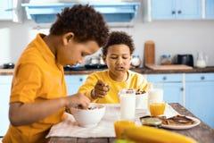 muchachos pre-adolescentes Rizado-cabelludos que comen los cereales y hablar Imagenes de archivo
