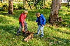 Muchachos que destruyen el tronco de madera con el martillo de trineo en el parque Imagen de archivo