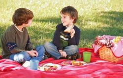 Muchachos que tienen una comida campestre Fotografía de archivo