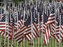 Muchas banderas americanas Fotos de archivo libres de regalías