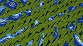 Muchas banderas de Naciones Unidas en campo verde