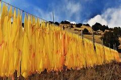 Muchas banderas del rezo del tibetano en la ladera Imagen de archivo