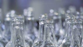Muchas botellas de cristal se mueven a lo largo de la banda transportadora almacen de video