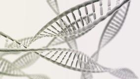 Muchas cadenas de la DNA en el fondo ligero Fotografía de archivo libre de regalías