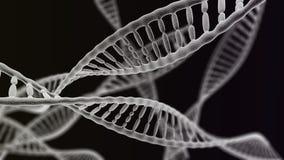Muchas cadenas de la DNA en el fondo negro Fotos de archivo